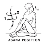 ardhamatsyendrasana-half-spinal-twist