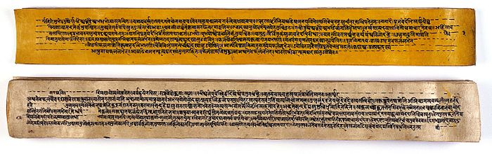 A_copy_of_the_tantric_work_Nihsvasatattvasamhita_Wellcome_L0031385